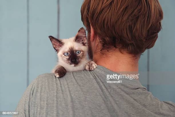 Back view of man with kitten on his shoulder