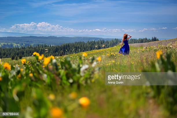 Back view of redhead in blue dress wandering through meadow of yellow wildflowers in springtime