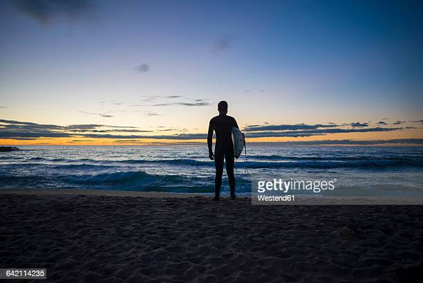 Back view of surfer standing on the beach at sunrise