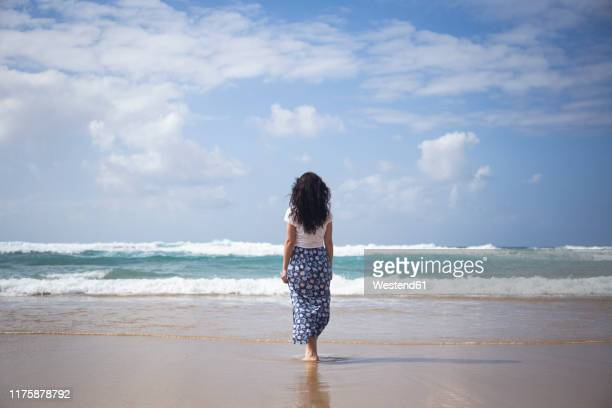 back view of woman standing on the beach looking at the sea, fuerteventura, spain - femme brune de dos photos et images de collection