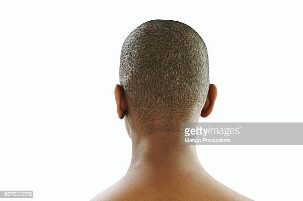 back view of woman's head - cabeza afeitada fotografías e imágenes de stock