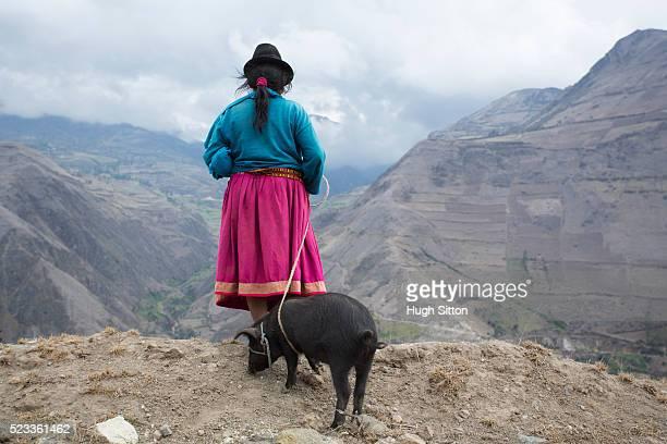 back view of women from highlands wearing traditional ecuadorian costume, ecuador - hugh sitton bildbanksfoton och bilder