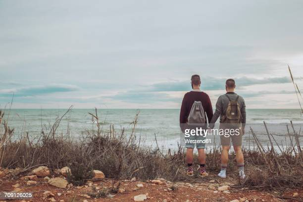 Back view of young gay couple looking at the sea