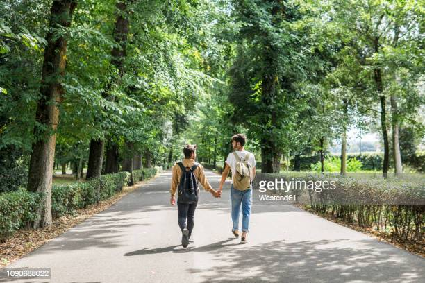 back view of young gay couple with backpacks walking hand in hand on a road - 同性のカップル ストックフォトと画像
