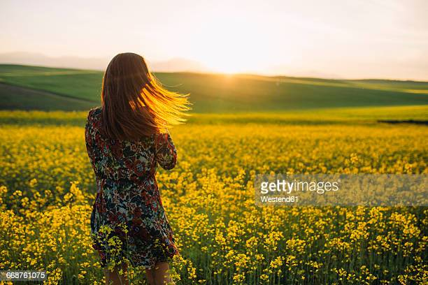 back view of young woman standing in a rape field at twilight - robe à motif floral photos et images de collection