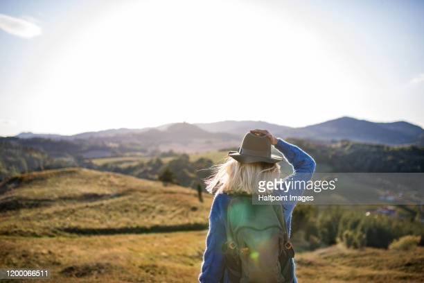 back view of young woman traveller walking outdoors in nature in autumn. - aktiver lebensstil stock-fotos und bilder