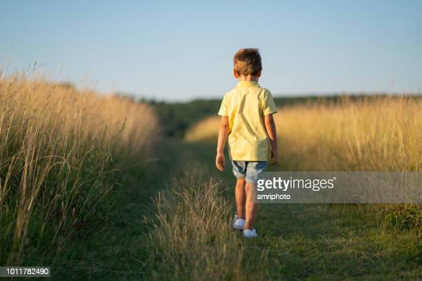 back view one little boy walking between high dry grass in summer - only boys stock pictures, royalty-free photos & images