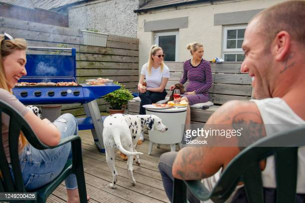 back yard barbecue - social gathering stock pictures, royalty-free photos & images