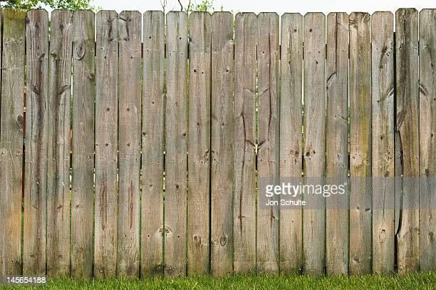 Back yard fence