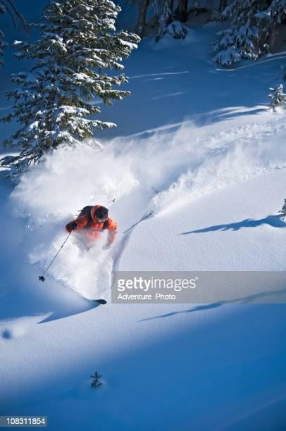 backcountry polvo esquiador acuáticas matorrales terreno - vail colorado fotografías e imágenes de stock