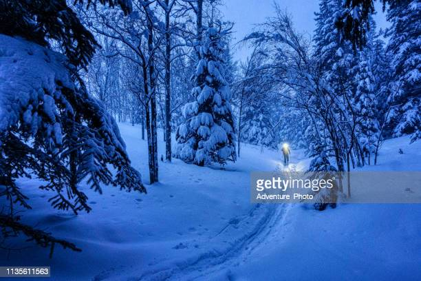 backcountry ski touring at dusk with fresh snow and headlamp - telemark stock pictures, royalty-free photos & images