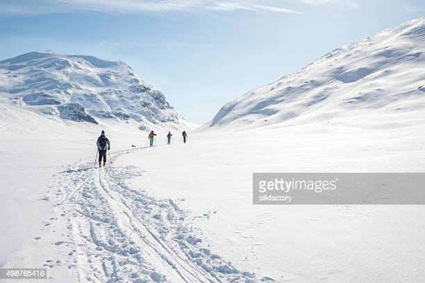 backcountry skiers in jotunheimen national park - norway stock pictures, royalty-free photos & images