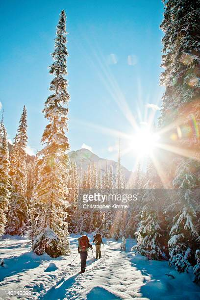 Backcountry skiing in sunshine