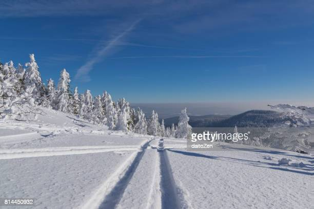 Backcountry skiing in wonderful winter landscape, Great Arber, Bavarian Forest , Bavaria, Germany
