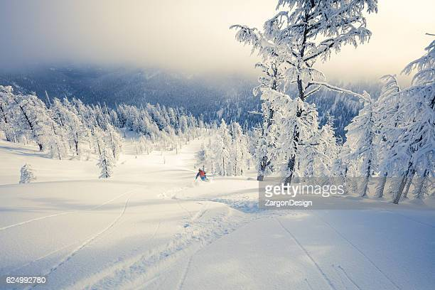 backcountry skiing - powder snow stock pictures, royalty-free photos & images