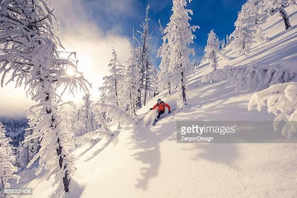 Ski de fond nordique