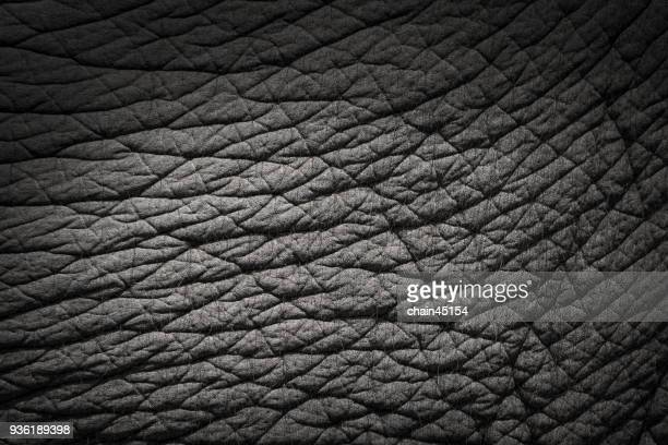 Background and texture of elephant skin.