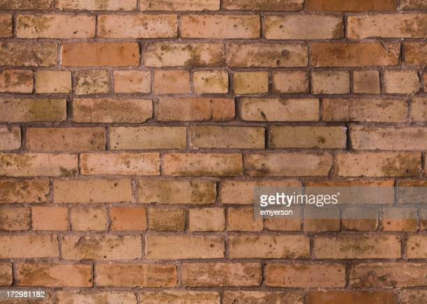 Background of a seamless red brick pattern