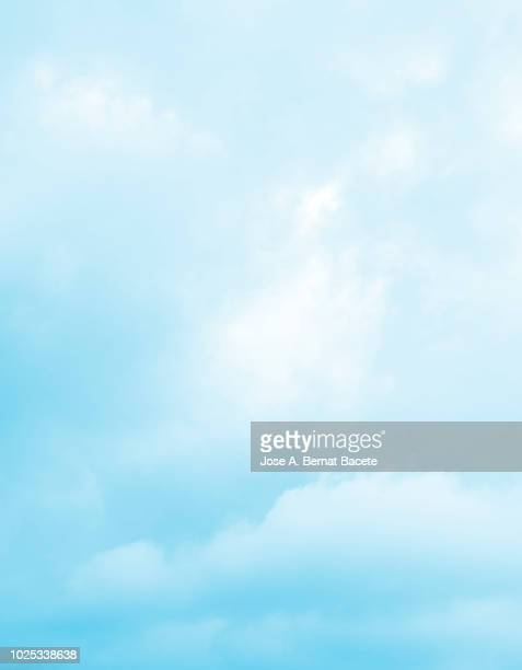 Background of forms and abstract figures of smoke and steam of colors on a white and soft blue background.