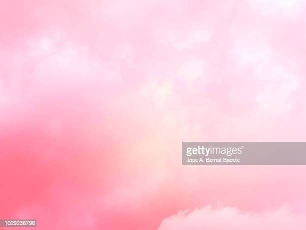 Background of forms and abstract figures of smoke and steam of colors on a white and pale pink background.