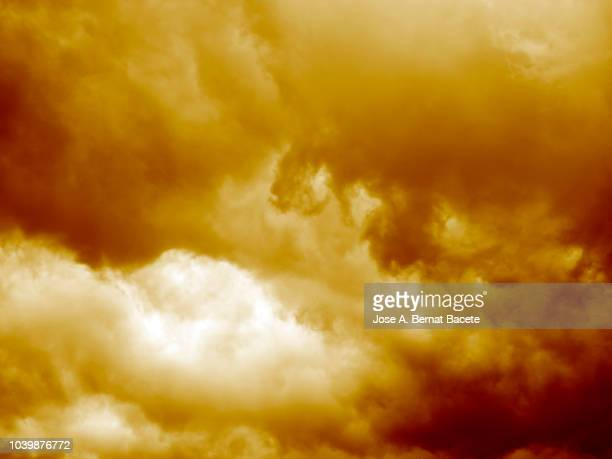 Background of forms and abstract figures of smoke and steam of colors on a beige and brown background.
