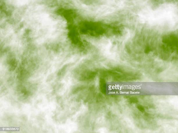 Background of forms and abstract figures of smoke and steam of colors on a green and white background.