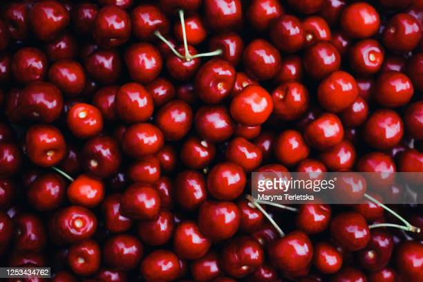 background of fresh beautiful red cherries. - cherry stock pictures, royalty-free photos & images