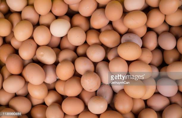 background of fresh eggs for sale at a market - animal egg stock pictures, royalty-free photos & images