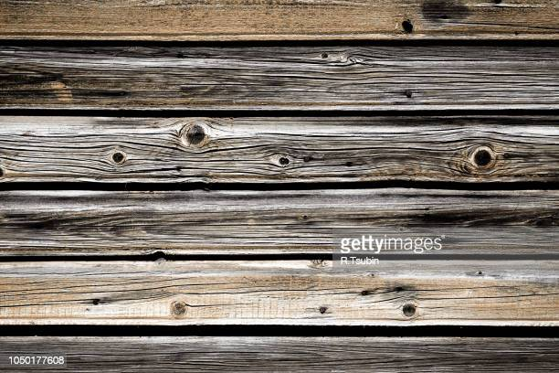 background of old and dry wood with cracked texture - bark stock pictures, royalty-free photos & images