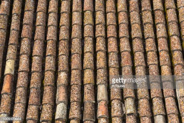 background of old roof tiles as a texture - herpes zoster fotografías e imágenes de stock