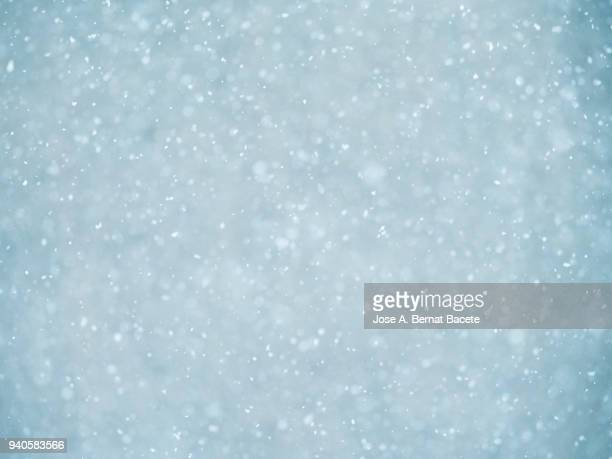 background of snowflakes of snow that fall down from the sky on a light blue bottom. - snowflake background stock photos and pictures