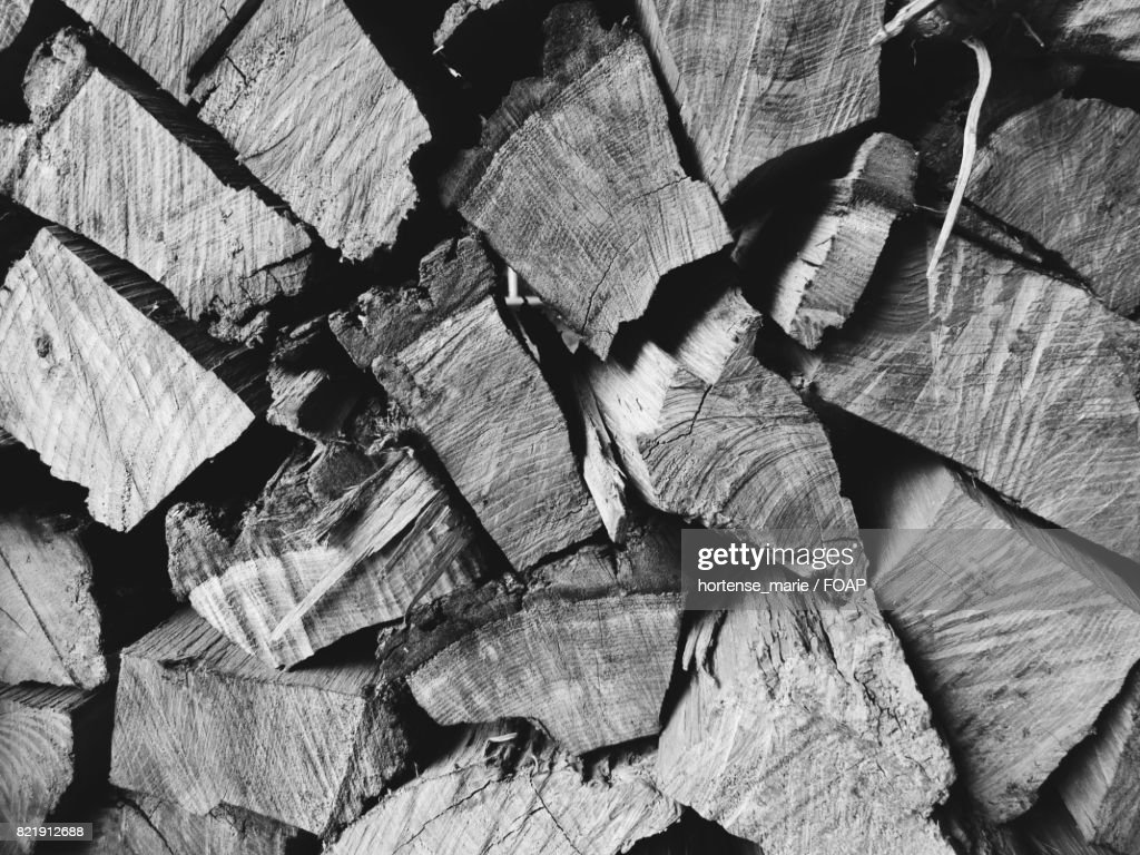 Background of wooden log : Stock Photo