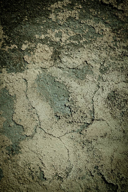 background texture and pattern of a damp grunge wall with mold