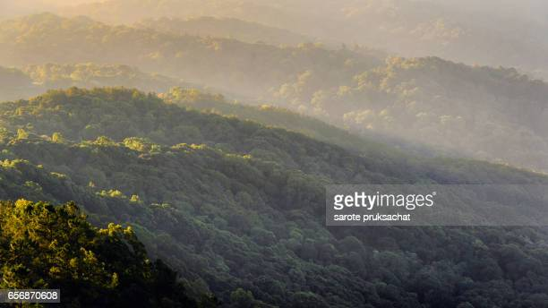 Background texture of mountain on mist in morning at  Chiang Mai, Thailand .