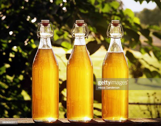 Backlit Bottles of Mead