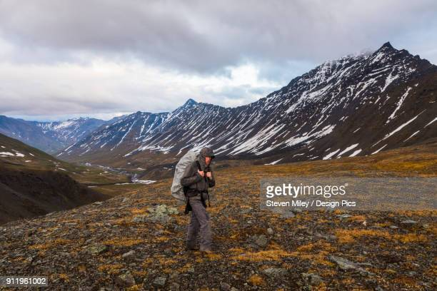 a backpacker ascends a pass during rainy weather in the brooks range - miley fotografías e imágenes de stock