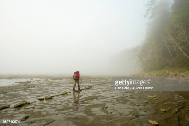 backpacker hiking along coastline with exposed bedrock during low tide, west coast trail, british columbia, canada - vancouver island stockfoto's en -beelden