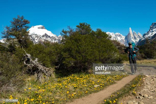 backpacker hiking on mountain against sky - chalten stock pictures, royalty-free photos & images