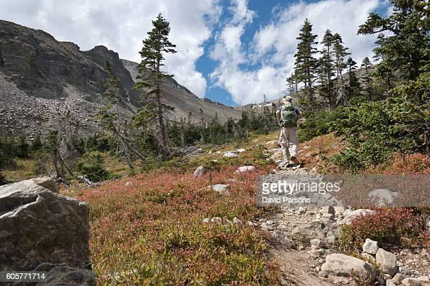 Backpacker man hiking Indian Peaks Wilderness Buchanan Pass trail Colorado