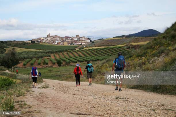 backpackers in the camino de santiago - camino de santiago stock pictures, royalty-free photos & images
