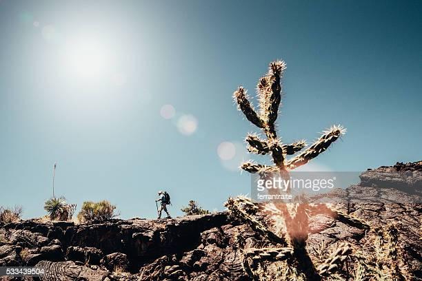 バック パッキング アドベンチャーズにニューメキシコ