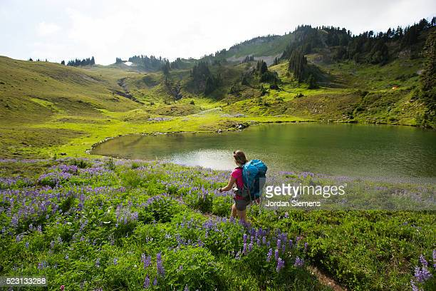backpacking in the high mountains - olympic park stock pictures, royalty-free photos & images