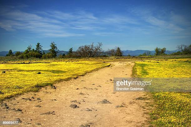 backroad to oz - medford oregon stock photos and pictures