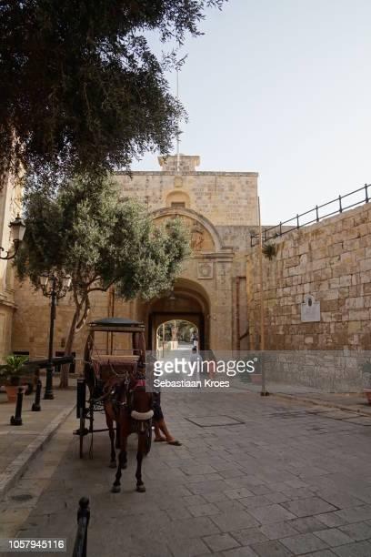 Backside of the Mdina Gate, Hore and Cart, People, Mdina, Malta