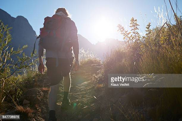 Backview of man walking up path, in the mountains