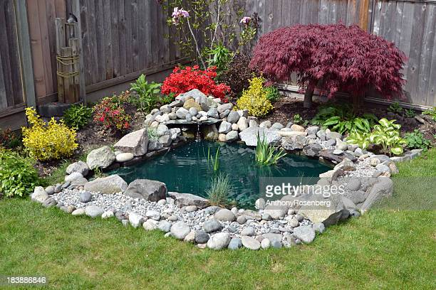 backyard pond - fountain stock pictures, royalty-free photos & images