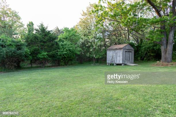 backyard shed - domestic garden stock pictures, royalty-free photos & images