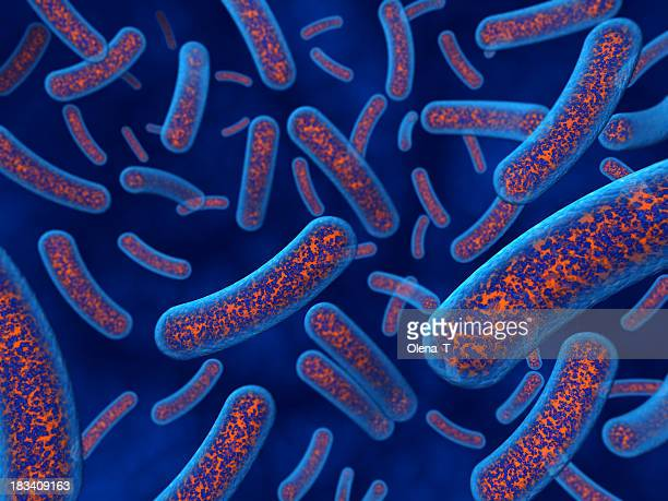 bacteria closeup - bacterium stock pictures, royalty-free photos & images