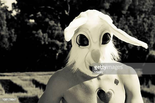 Schlechte rabbit