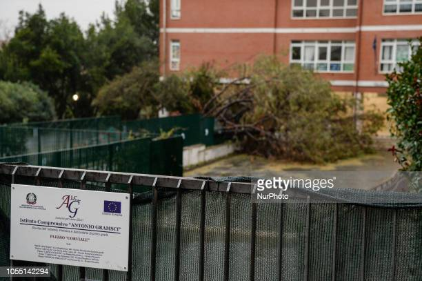 Bad weather in Rome trees fallen throughout the city due to violent gusts of wind Tree collapsed in the Antonio Gramsci school at Portuense Rome 29...